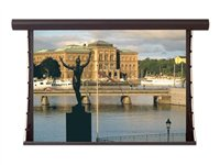 Draper Silhouette/Series V Electric 16:10 Format Projection screen