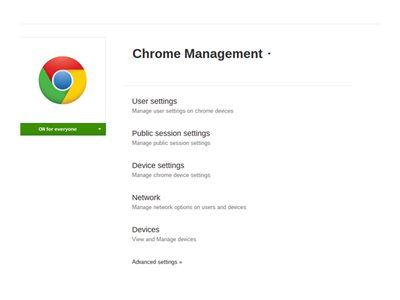 Google Chrome OS Management Console - subscription license (1 year) - 1  license