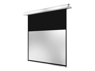 Electric Professional Plus Leinwand - 253 cm (100 Zoll)