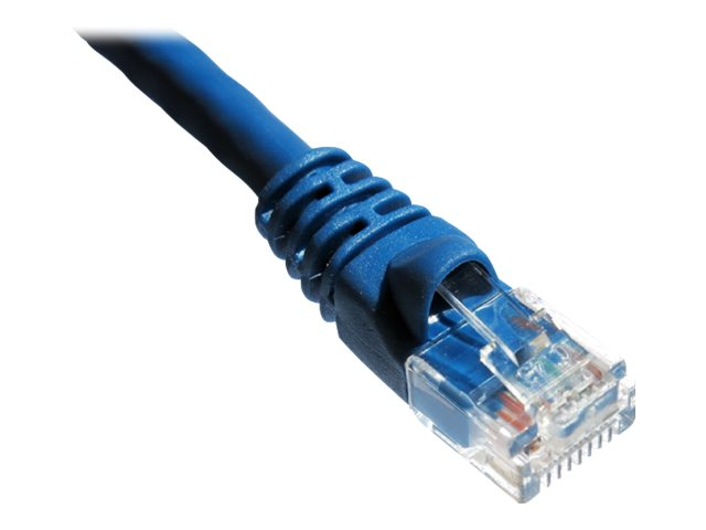Axiom patch cable - 3.05 m - blue