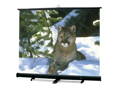 Draper Luma 2/R NTSC/PAL Video Format Projection screen 120INCH (120.1 in) 4:3 Matt White