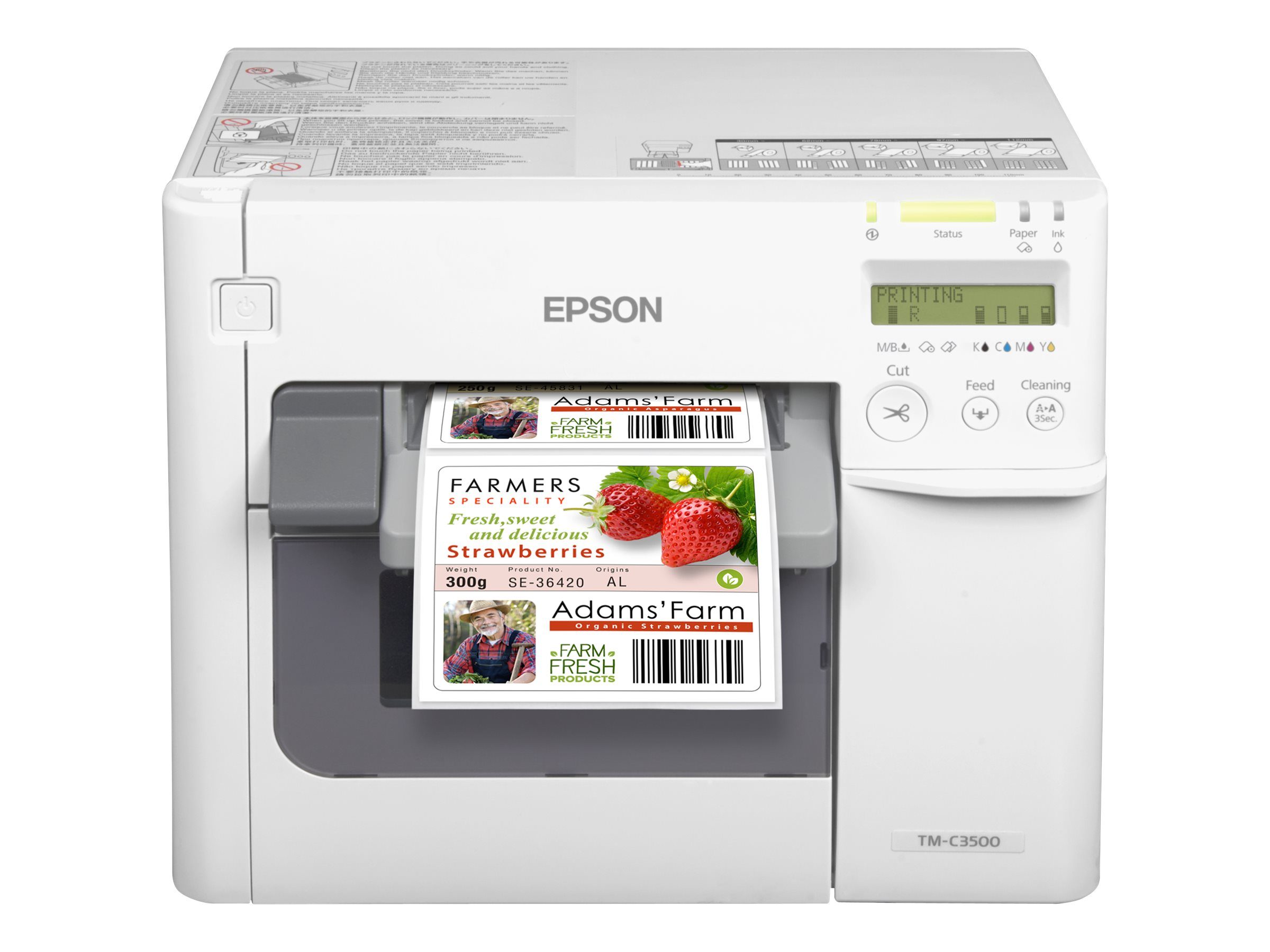 Epson TM C3500 - label printer - color - ink-jet