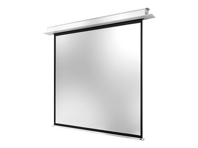 Electric Professional Plus Leinwand - 275 cm (108 Zoll)