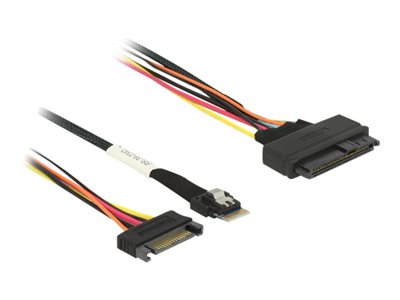 DeLOCK Serial Attached SCSI (SAS) internt kabel Sort 50cm