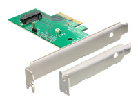 DeLOCK PCI Express Card > 1 x internal M.2 NGFF - Speicher-Controller