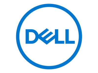 Dell - solid state drive - 250 GB - USB 3.1 Gen 2