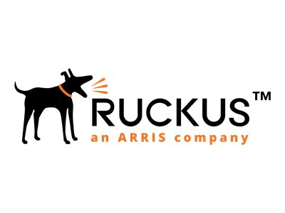 Ruckus BullDog Support - extended service agreement - 5 years - shipment
