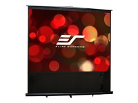 Elite Reflexion Series FM100V Projection screen 100INCH (100 in) 4:3 MaxWhite black