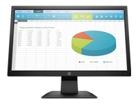 HP P204 - LED monitor - 19.5