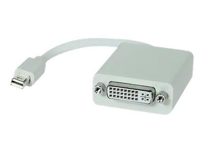 Comprehensive DisplayPort adapter Mini DisplayPort (M) to DVI-I (F)