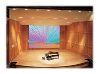 Draper Paragon/Series E 4:3 NTSC/PAL Video Format Projection screen ceiling mountable