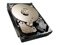 "Seagate Video 3.5 HDD ST4000VM000 - Festplatte - 4 TB - intern - 8.9 cm (3.5"") - SATA 6Gb/s"