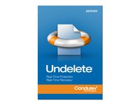 Undelete Server Edition (v. 10) license 1 server volume 500-999 licenses Win