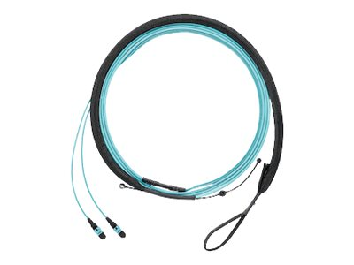 Panduit QuickNet PanMPO Round Harness Cable Assemblies - network cable - 1 m - aqua
