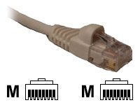 CP Technologies patch cable - 3.05 m - white
