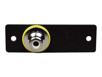 Wiremold Audio/Video Interface Plates (AVIP) RCA Female to BNC Female Adapter - faceplate