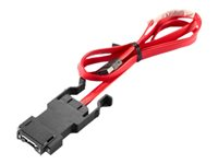 Lenovo Front Cable IEEE 1394 cable 2.6 ft