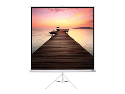 Hamilton Buhl Square Format Projection screen with legs floor-standing 99INCH (98.8 in) 1:1