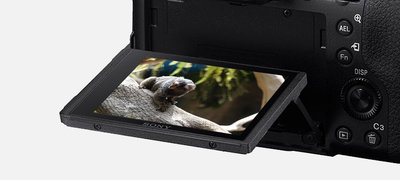 Convenient tiltable LCD and top display panel