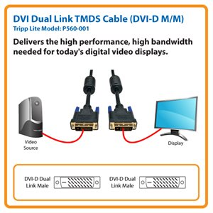 Connect a Standard DVI Monitor or Display to Your Computer