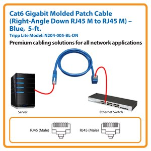 5-ft. Cat6 Gigabit Molded Patch Cable, Right-Angle Down RJ45 M to RJ45 M (Blue)