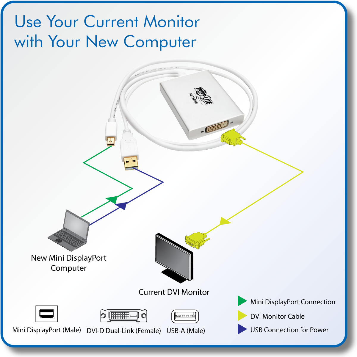 Tripp Lite Mini Displayport To Dvi D Adapter Dual Link Active Mdp Wiring Diagram Connect A Single Or Monitor