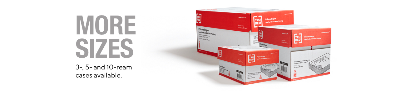 Data Copy A4 Everyday Copier Paper 80g Reams {500 sheets} FREE P/&P Offer!